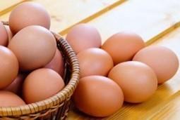 5 Cosas que debemos saber de los huevos | Camino al Culturismo | Ayuda en el gym. | Musculación | Scoop.it