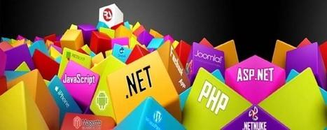 Essentials of a Web Development Company - TechMagz | Outsource Software Development | Scoop.it