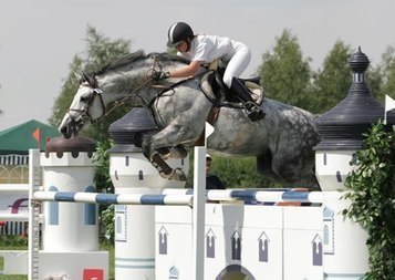 Genetics of Professionals', Amateurs' Show Jumpers Compared | Cheval | Scoop.it