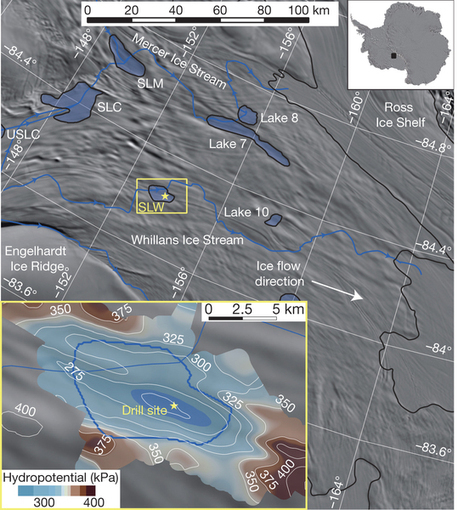 A microbial ecosystem beneath the West Antarctic ice sheet : Nature | Plant-Microbe-Interactions | Scoop.it