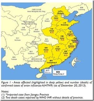 Avian Flu Diary: Hong Kong: Epidemiological Update On H7N9 | Influenza | Scoop.it