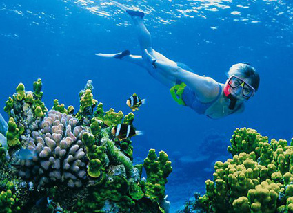 Barrier Reef's World Heritage status shaky | Australian Culture | Scoop.it
