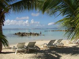 Tourisme Vert et écotourisme: Juillet et août, venez vous mettre au vert en Guadeloupe pour vos vacances d'été ! | vacances d'été pas chère en 2013 en Guadeloupe | Scoop.it
