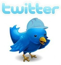 TweetAdder and MLM or network marketing success | Professional Direct Sales | Scoop.it