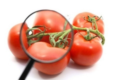 Red revolution: As science grows for lycopene, will the market follow? | Nutraceutica | Scoop.it