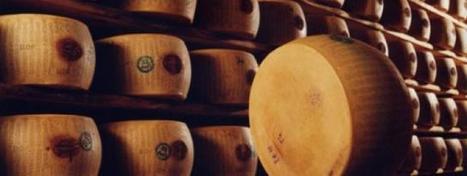 Insolite : Des braqueurs de meules de parmesan arrêtés | thevoiceofcheese | Scoop.it