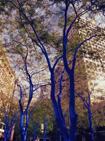 The Blue Trees by Konstantin Dimopoulos | Art Installations, Sculpture | Scoop.it
