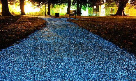 Une alternative écologique aux lampadaires en ville : des chemins lumineux vous guideront à travers la nuit   Wallgreen - Louez moins cher et passez au vert !   Scoop.it