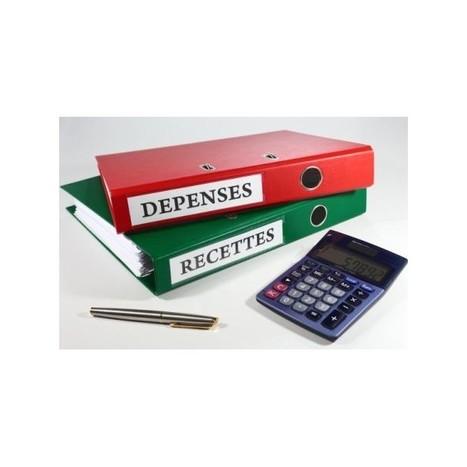 SECRETARIAT | Prestations pour expert-comptable 75 | Télétravail : Demande devis | Scoop.it