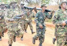 Tanzania ready to send troops to DRC | African Conflicts | Scoop.it