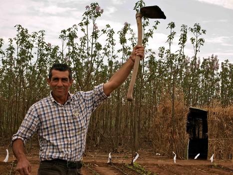 En Andalousie, des paysans occupent des terres pour «survivre» - Rue89 | Union Européenne, une construction dans la tourmente | Scoop.it