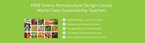 Rengenerative Leadership Institute - Permaculture Courses | mrs | Scoop.it