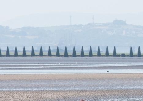Dead body found on Silverknowes beach | Today's Edinburgh News | Scoop.it