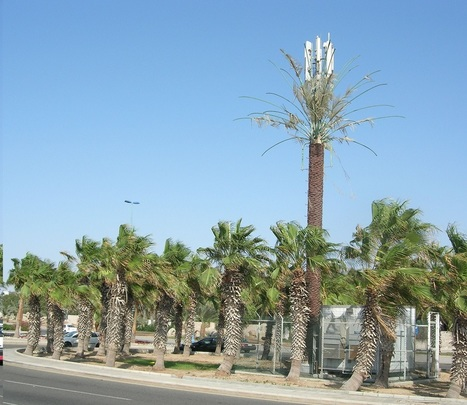 The bizarre history of cellphone towers disguised as trees | Geography Education | Scoop.it