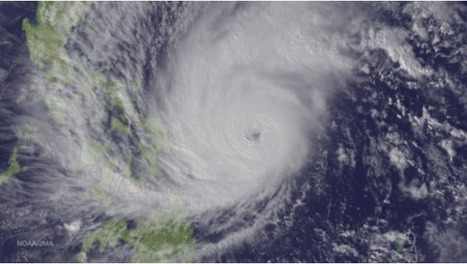 Infant formula donations banned at Typhoon Ruby evacuation centres   Breastfeeding Promotion & Scandals   Scoop.it