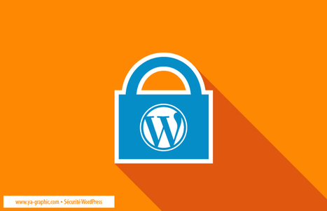 Piratage WordPress : Voici les risques en cas de site piraté | Webmarketing | Scoop.it
