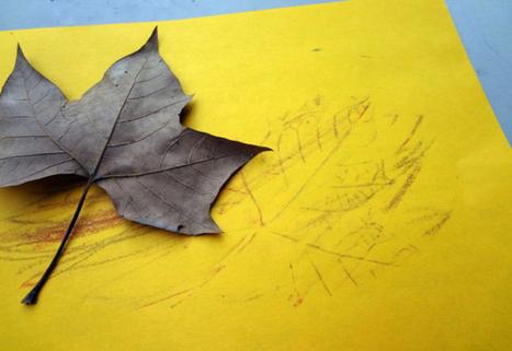 4 Manualidades de Otoño para aprender inglés. | Vamos Creciendo | Som Somni | Scoop.it