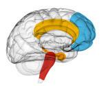 Mind Mapping et créativité | INTELIGENCIA INTUITIVA | Scoop.it