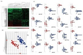 microRNAs in Circulation Are Altered in Response to Influenza A Virus Infection in Humans | A Tale of Two Medicines | Scoop.it