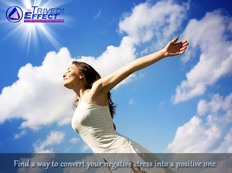 A positive attitude is the best weapon against stress | Health and Wellness | Scoop.it