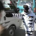 'Traffic Zebras' Enforce Road Safety In Bolivia | Quite Interesting News | Scoop.it