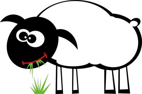 Un bio de moins en moins bio ! | AMAP - Bio | Scoop.it