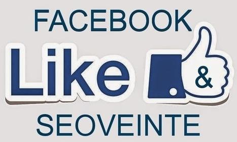 SEOVEINTE - ¿Facebook quiere pagar 15.000 Dolares al ganador del concurso SEOVEINTE? | Noticias Online | Scoop.it