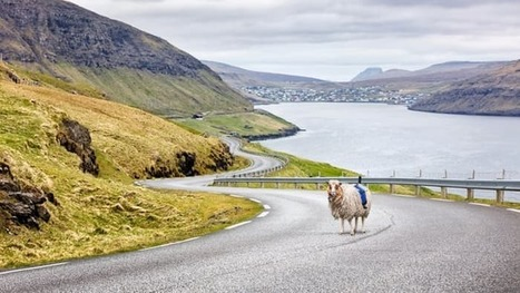 In the Faroe Islands, Street View has become Sheep View | Real Estate Plus+ Daily News | Scoop.it