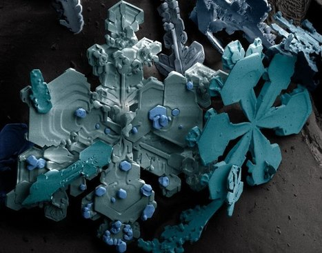 25 Microscopic Images of Snow Crystals | avecpapiers | Scoop.it