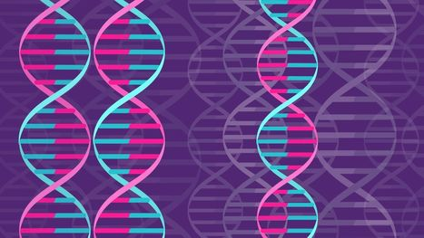 How scientists could patent the genetic blueprint for a human | Technology Transfer & Innovation | Scoop.it