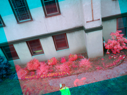 Near-Infrared Camera | publiclaboratory.org | Remote Sensing News | Scoop.it