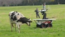 Agricultural Robots Help Australian Farms Boost Productivity | Robotic applications | Scoop.it