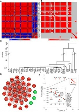 A Module of Human Peripheral Blood Mononuclear Cell Transcriptional Network Containing Primitive and Differentiation Markers Is Related to Specific Cardiovascular Health Variables | Complex World | Scoop.it