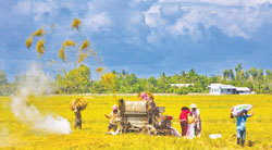 Sustainable farming key to food security — TalkVietnam | DuPont ASEAN | Scoop.it