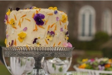 For pretty cakes... just add flower | edible landscaping | Scoop.it