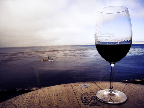 How to pick wine while travelling | Travel Wolves | Scoop.it