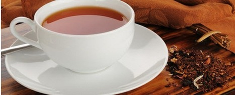 Rooibos – 7 top reasons why you should drink 6 cups daily   Science   Scoop.it