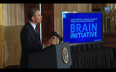Will Obama's new $100m brain mapping project be open access?   Open Knowledge Foundation Blog   Open Knowledge   Scoop.it