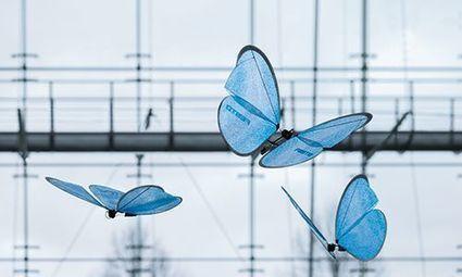 D'impressionnants papillons bioniques volent de façon autonome | Post-Sapiens, les êtres technologiques | Scoop.it