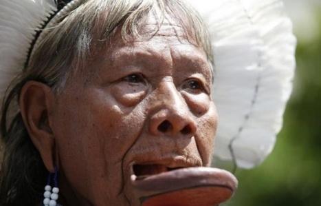 Les défenseurs du droit à la terre victimes d'une répression accrue | RSE et développement durable | Scoop.it