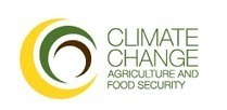 African agriculture workshop focuses on climate-smart agriculture | Forests, Climate Change, REDD+, Food Security | Scoop.it