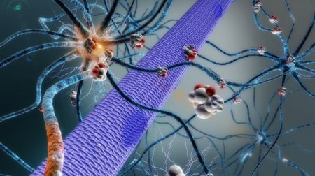 Implanted micropump could deliver epilepsy drugs right into the brain | Sustainable Futures | Scoop.it