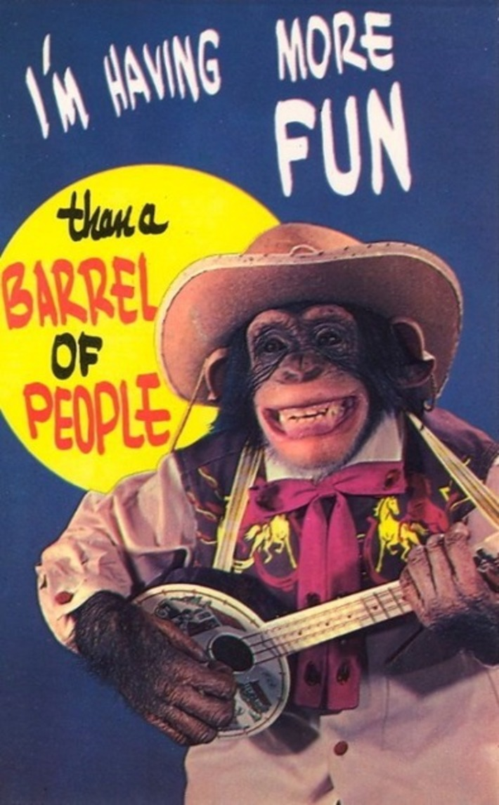 More Fun Than A Barrel Of People | Kitsch | Scoop.it