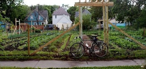 Leasing Abandoned City Lots, Six Young Farmers Cobble Together a Sustainable Urban Farming Enterprise | Urban Agriculture | Scoop.it