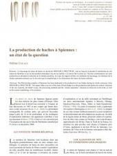 «La production des haches à Spiennes : un état de la question», Hélène Collet | Mégalithismes | Scoop.it