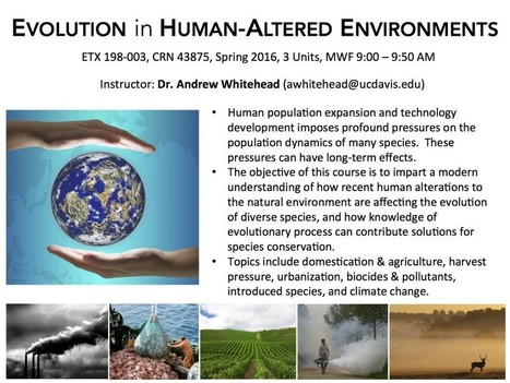 Course at #UCDavis: EVOLUTION in HUMAN-ALTERED ENVIRONMENTS | Views of Evolution | Scoop.it