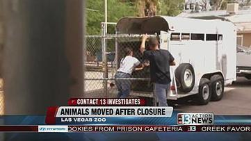 Animals at Las Vegas Zoo being moved to different locations - KTNV Las Vegas | Wildlife | Scoop.it