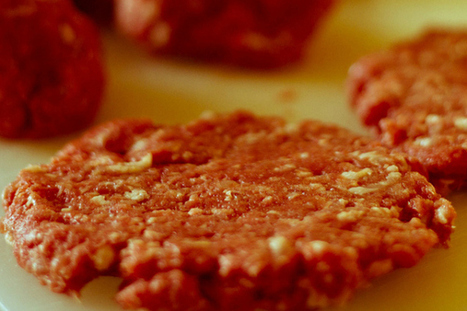 Parliament pressures Commission for better meat origin labelling | Canings | Scoop.it