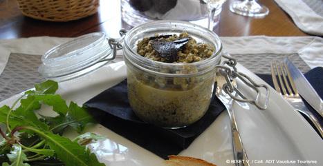 La Truffe, de l'assiette à la cueillette - Provenceguide   Education   Scoop.it