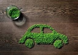 Autos ecológicos hechos de fibras vegetales | Fer Tiburcio | Scoop.it